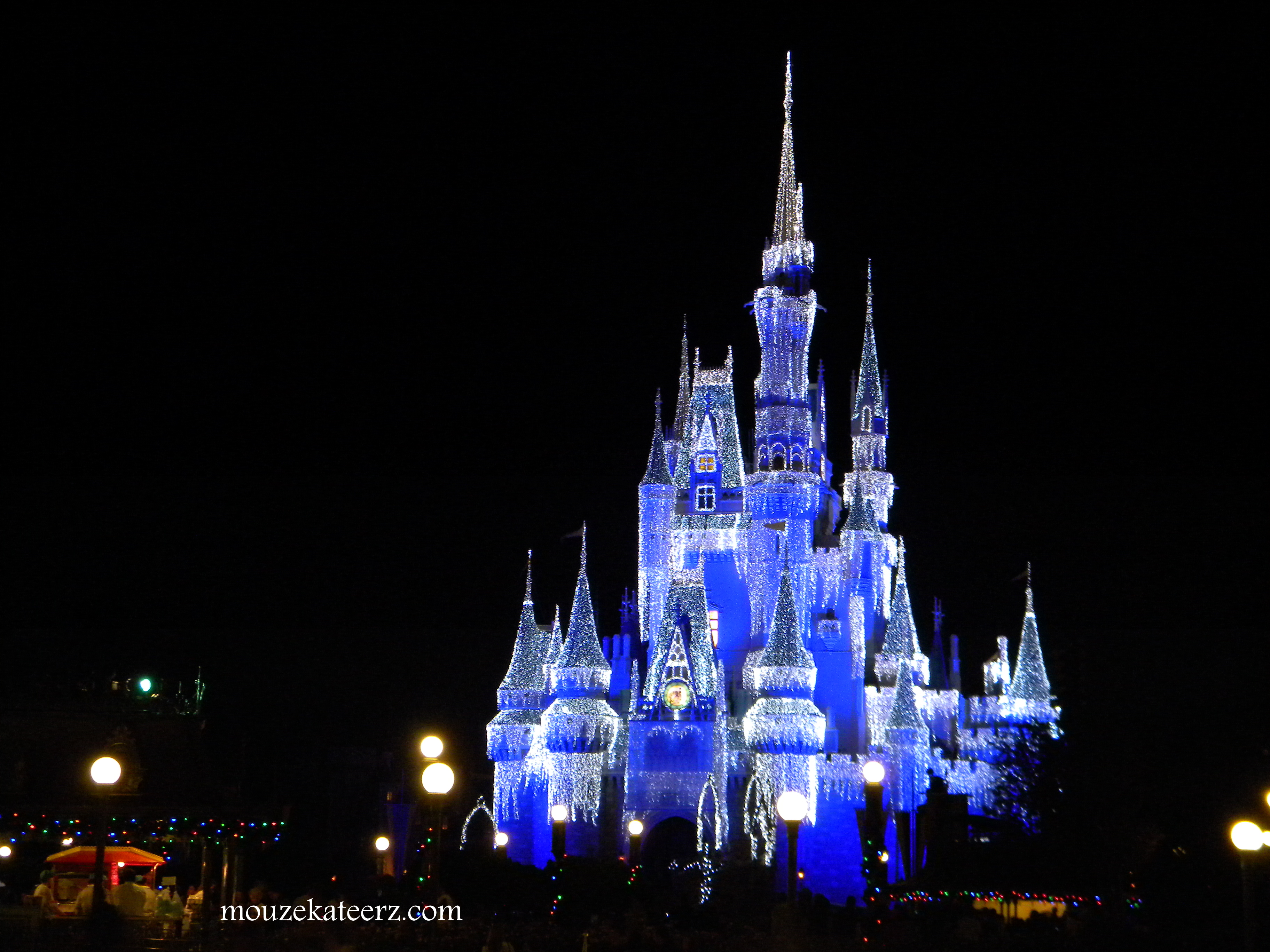 Cute Background Wallpaper For Computer Christmas Lights Animal Hd How To Survive Walt Disney World At Thanksgiving