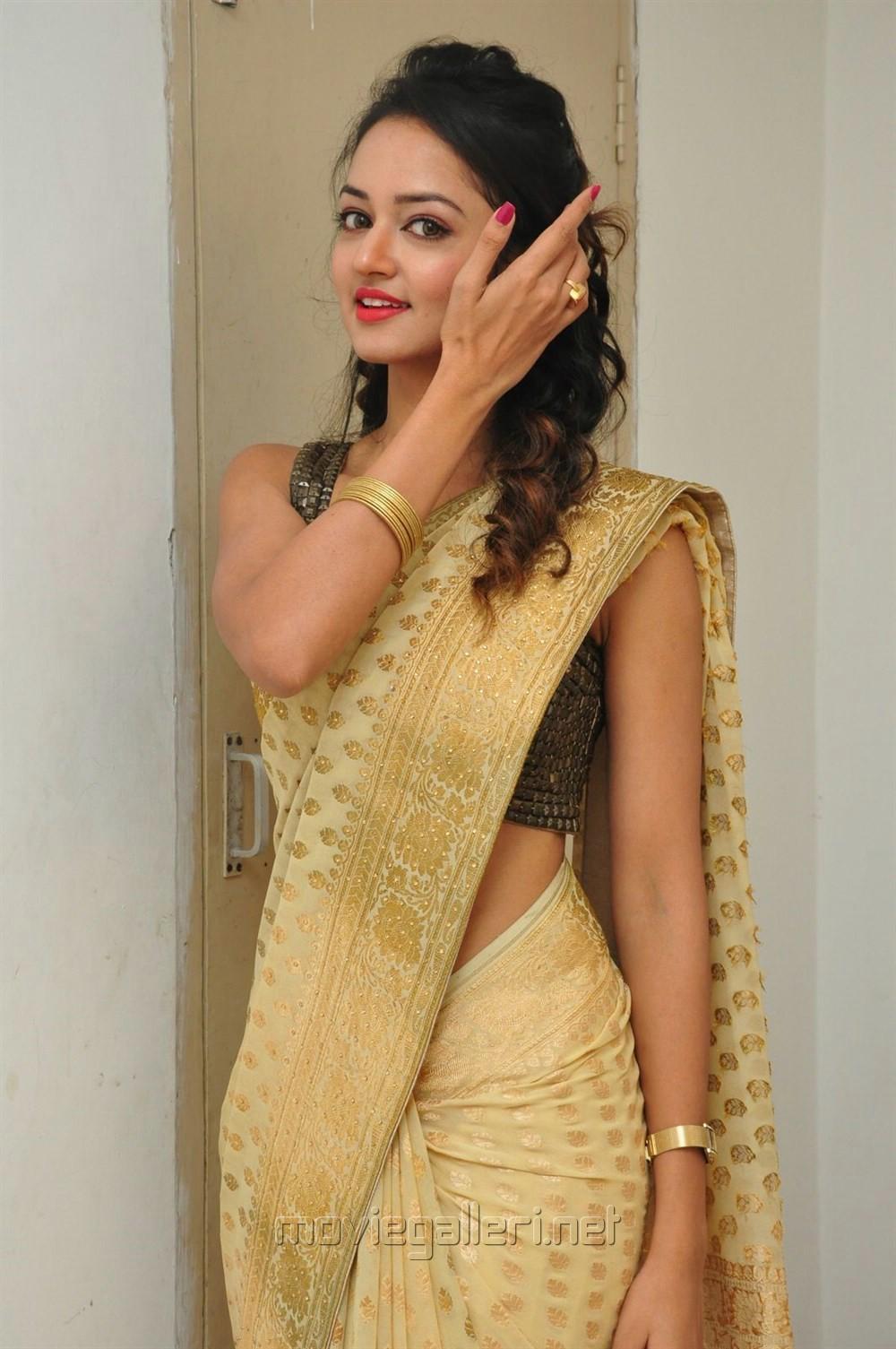 Shanvi Cute Hd Wallpapers Picture 884005 Actress Shanvi Srivastava In Golden Color