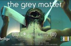 The Grey Matter (2014)