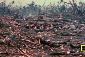 Inside World War II (2012)