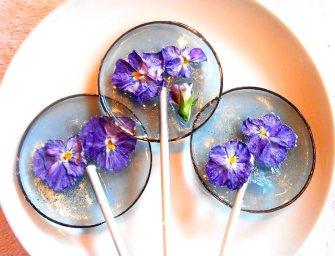 Les sucettes florales de Janet Best