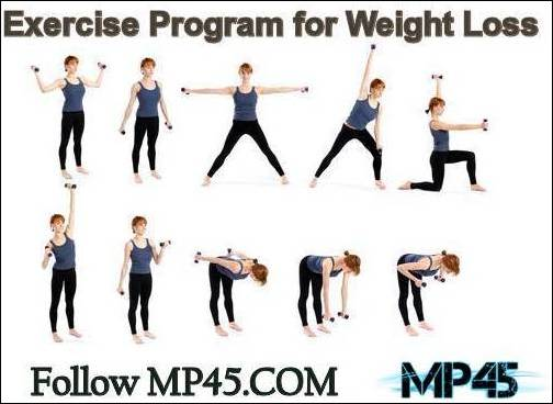 Which Are The Best Exercise Program For Weight Loss Beginners - gym workout for weight loss