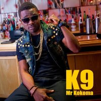 K9 [@theofficialk9] – Takerewa [leak] : Music