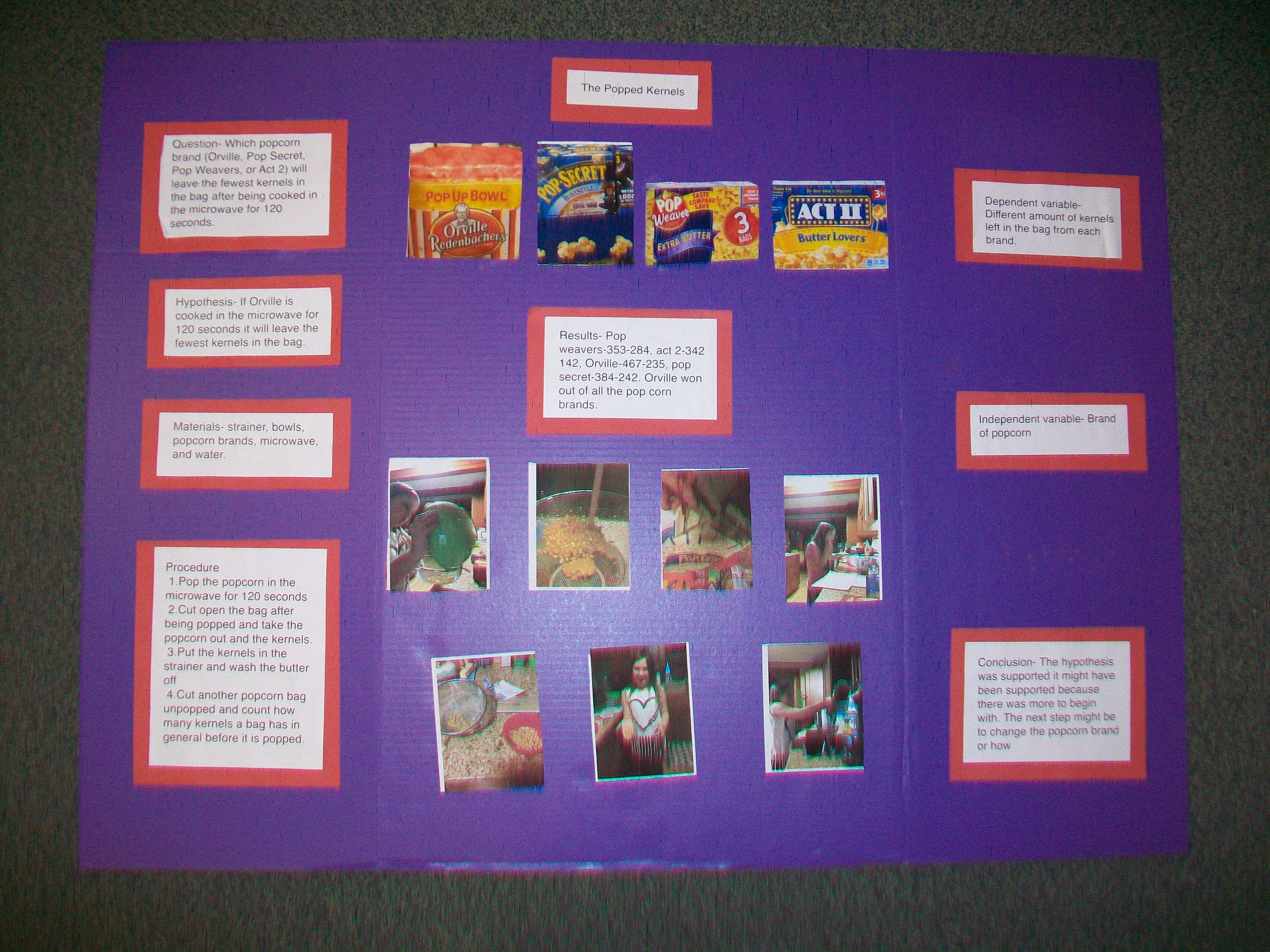 abstract for science fair project