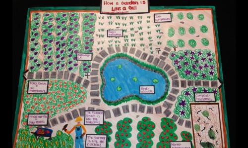 Cell Analogy Projects - Mrs Bambury\u0027s Classroom Website