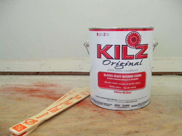 Eliminate Cat Urine Odor  |  A Kilz Original Review  |  Mrs. Fancee