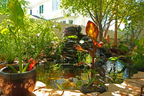 Backyard Pond by Todd Ryburn