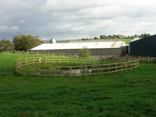 Fenced_Pond_-_geograph.org.uk_-_69202