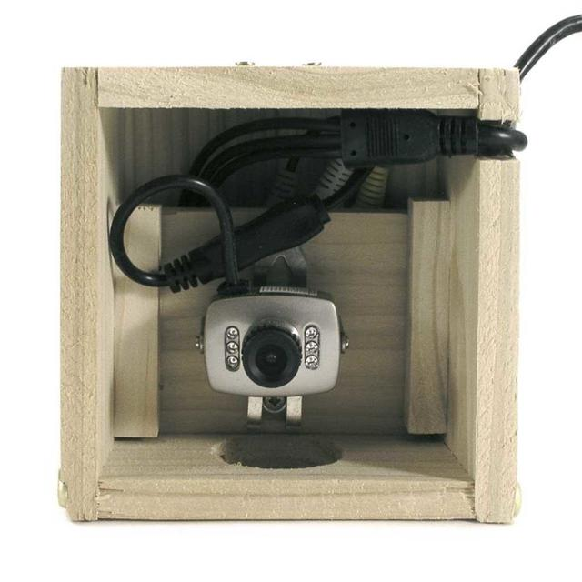 Buy Camera Nest Box The Worm That Turned Revitalising