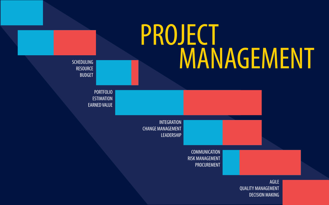 project management practices and critic