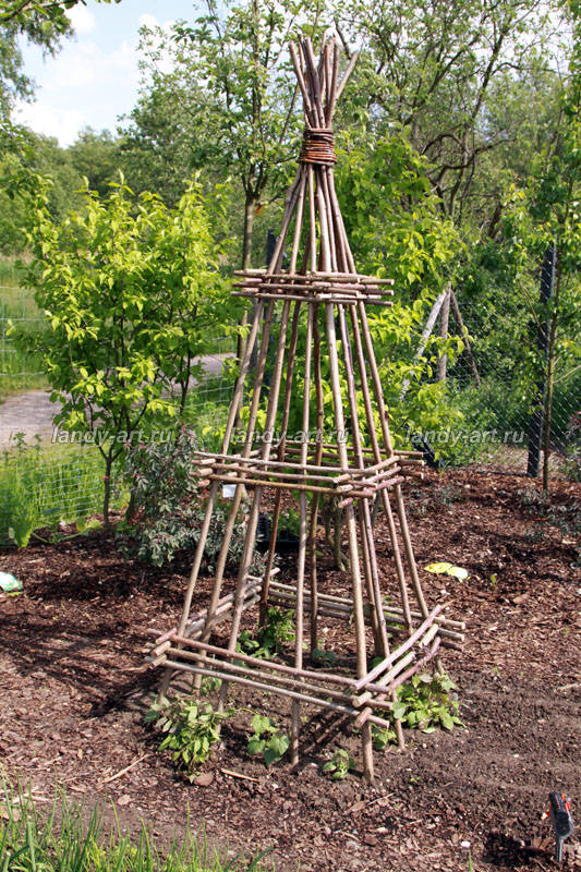 Making willow plant supports Plants, Gardens and Garden ideas