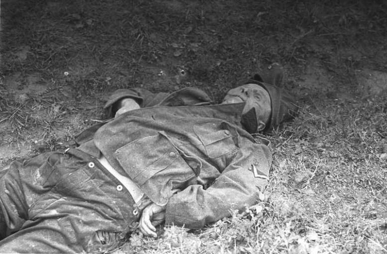 Фото убитого немецкого солдата битва, война, курская