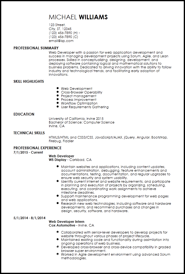 entry level web developer resume example