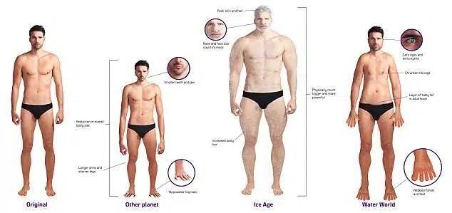 Cómo cambiará el cuerpo humano en el futuro?