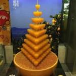 地元松山の良さを再認識。移住におすすめな松山の魅力について語るよ