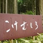 愛媛県の観光でおすすめする苔筵(こけむしろ)
