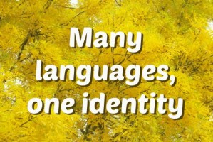 Many languages, one identity