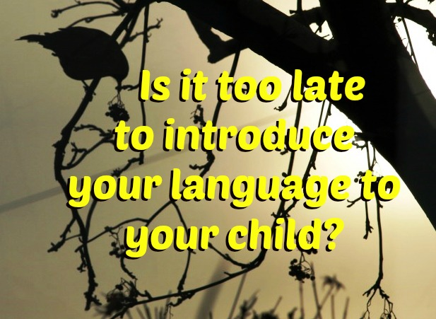 Is it too late to introduce your language to your child