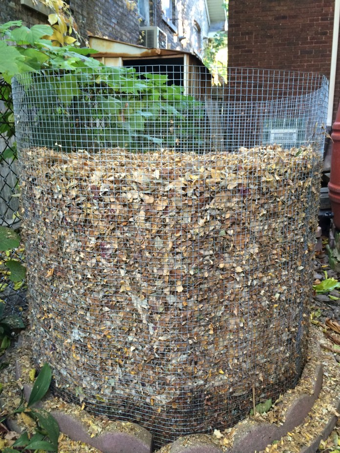 My first compost bin, mid-October, tucked around the side of the house.