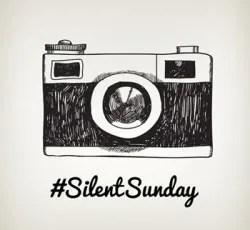 #SilentSunday