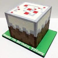 25 Minecraft cake ideas to build | Mum's Grapevine