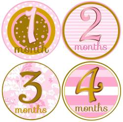 Enamour Onesies Free Baby 12 Month Stickers Baby Girl Month Stickers Baby Girl Month Stickers Girl Age Milestone Stickers Pink G Baby Month Stickers