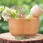 Un botiquín natural: Las cicatrices