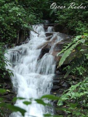 Cascadas en el biotopo, San Marcos - foto por Oscar Rodas