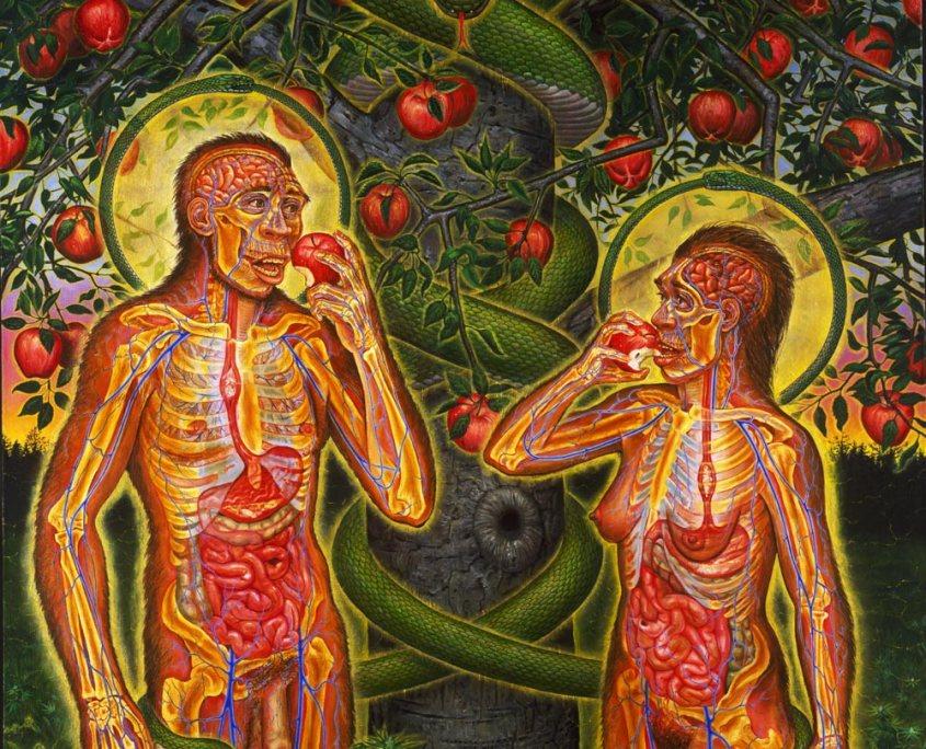 Adam and Eve – Alex Grey