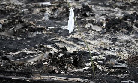 """1jMj7e3 Revelan que los cadáveres del avión derribado """"no estaban frescos"""""""