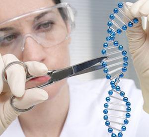 """gen El futuro ya está aquí: alcances y peligros de la """"Reacción en Cadena Genética"""""""