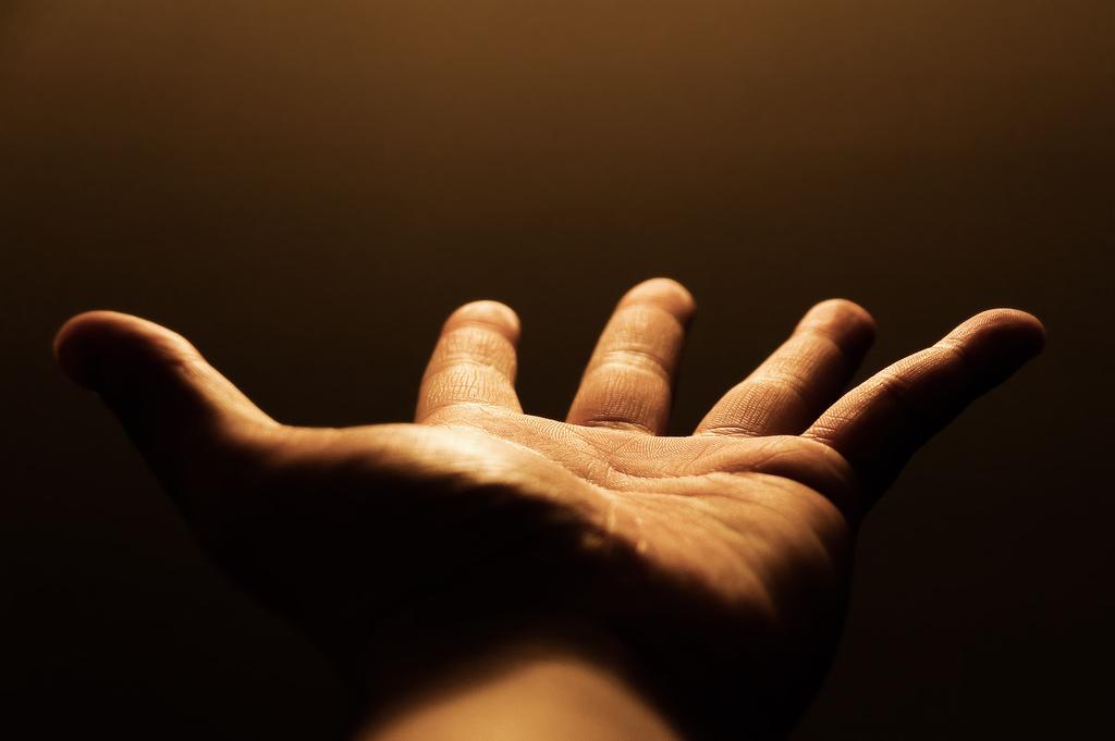mano ¿Por qué las manos tienen cinco dedos y no siete?