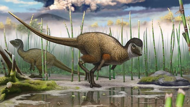 Quizás todos los dinosaurios tuvieron plumas
