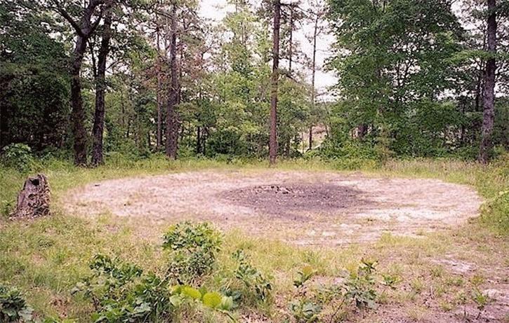 bosques-malditos-del-mundo-4 Bosques malditos del mundo