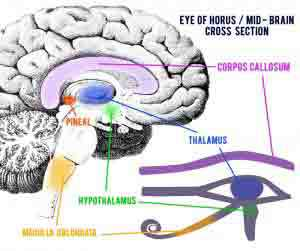 cd231-el-ojo-que-todo-lo-ve-2528425292 El Ojo que Todo lo Ve: Orígenes sagrados de un símbolo secuestrado