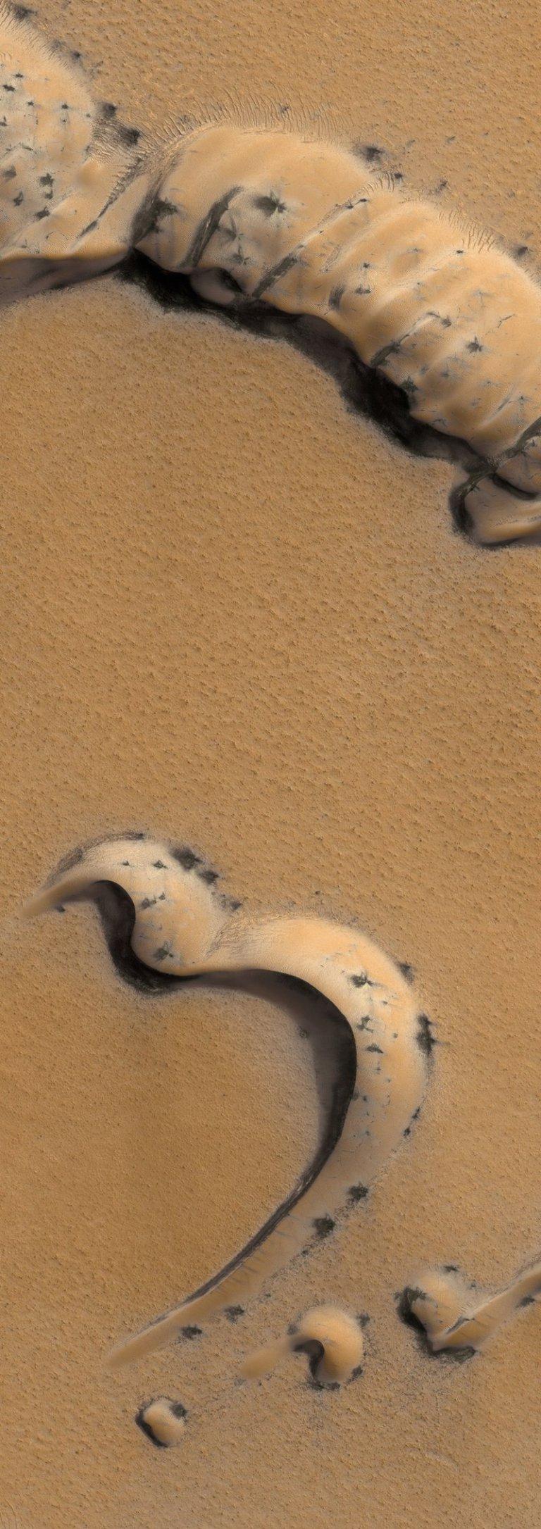 esas-cosas-negras-en-el-suelo-de-marte-son-peligrosas-1 ¿Esas cosas negras en el suelo de Marte son peligrosas?