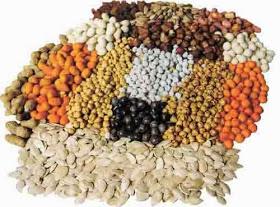 Obtén más calcio de forma saludable mediante estas semillas