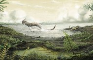 El primer animal en caminar en tierra pudo haberlo hecho en Escocia
