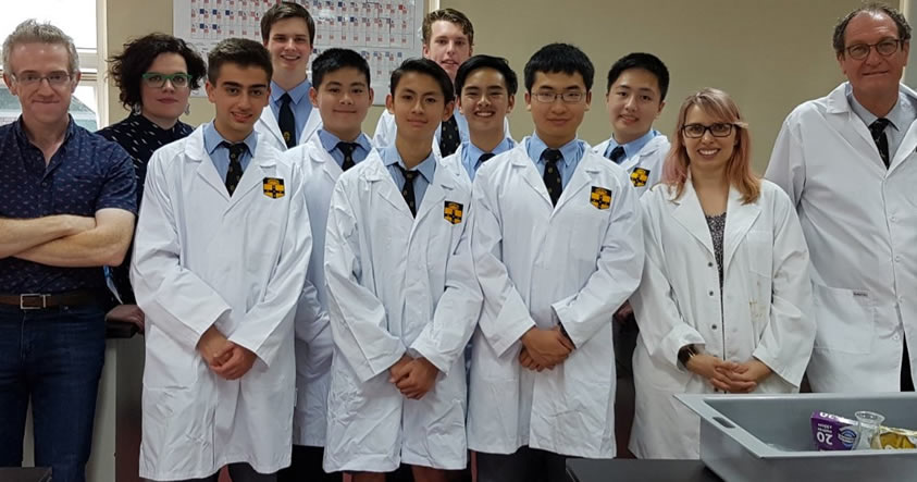breaking-good-estudiantes-recrean-farmacos-de-750-dolares-por-solo-2-dolares Breaking Good: Estudiantes recrean fármacos de 750 dólares por solo 2 dólares