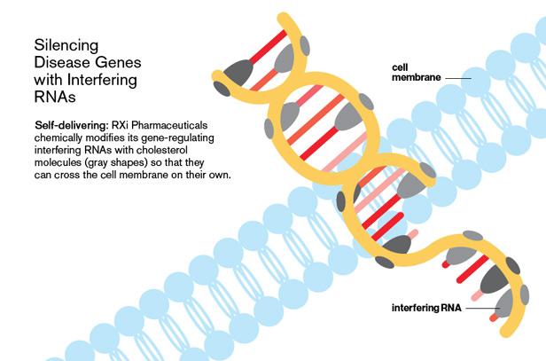 Monsanto ultima una tecnología de organismos que mata especies mediante el apagado de genes