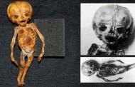 ¿Es el extraño ser de la tribu Chucunaque un feto extraterrestre?   VM Granmisterio