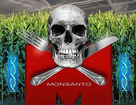 1x1.trans Las 10 mentiras que Monsanto quiere que creamos