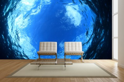 Exotic Underwater Wall Mural Ideas for Your Living Rooms | Mural Factory