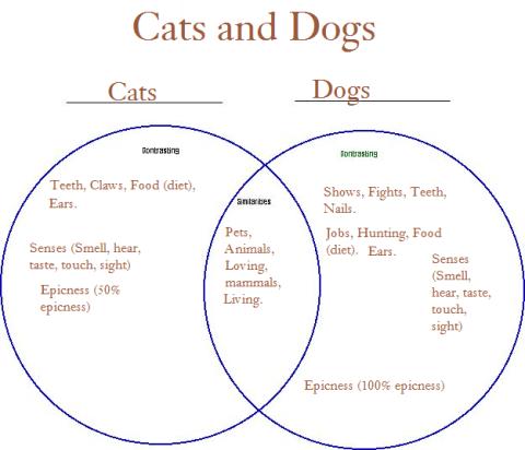 cats dogs ven diagram