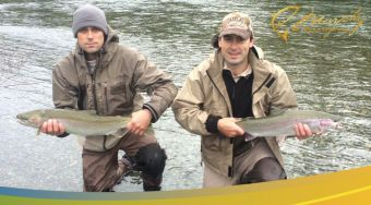Double Header Fall Steelhead Stamp River
