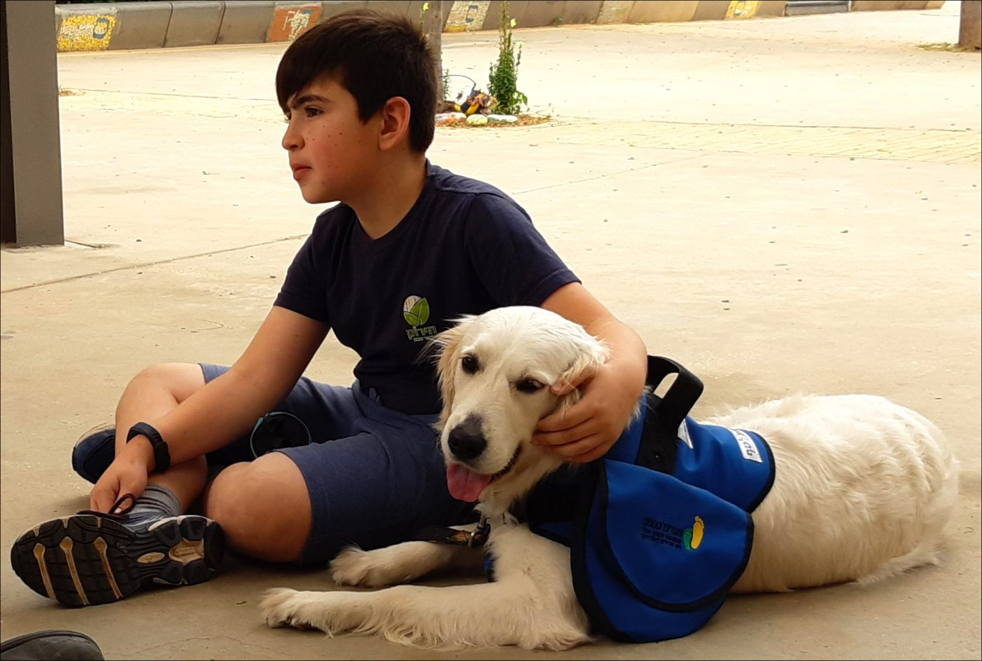 Duchenne Muscular Dystrophy News Service Dogs Just One Way Little Steps Assists Duchenne