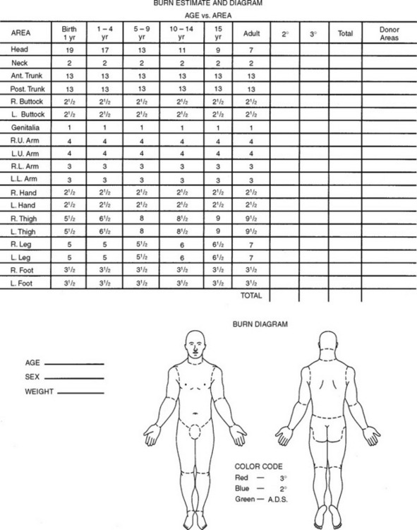 71 beetle hazard switch wiring diagram  | 735 x 390