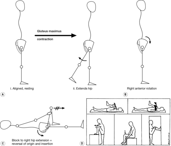 A comprehensive treatment approach Musculoskeletal Key