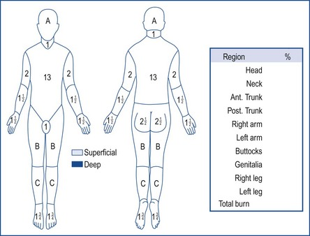 Burns and Plastic Surgery Musculoskeletal Key