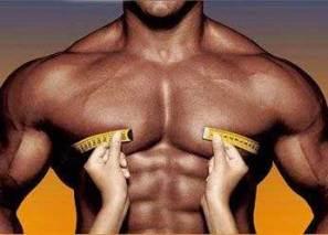 musculos-voluminosos